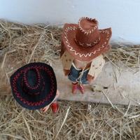 Jönnek a Cowgirl Lányok