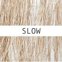 Amit  slow designról feltétlenül tudnod kell...