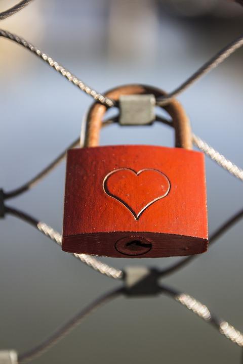 heart-268151_960_720.jpg