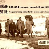 No amnesty...!