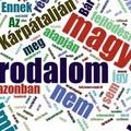 A határon túli magyar irodalmak