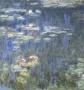 Monet - Tavirózsák