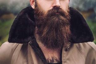 Egy kis szakáll történelem