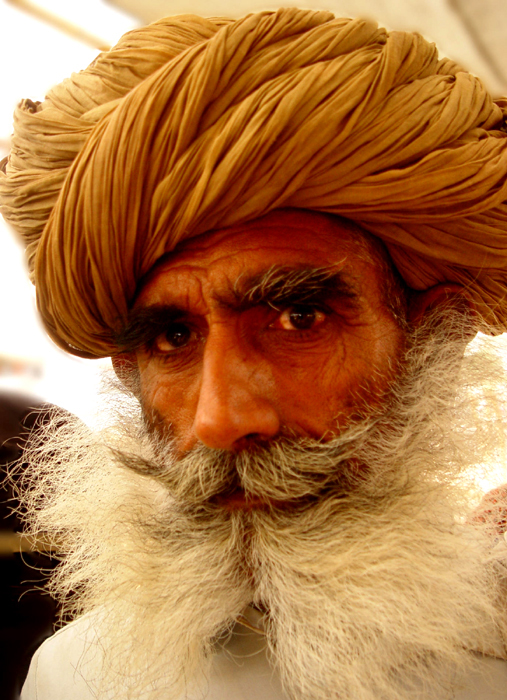 indian_beardcity.jpg