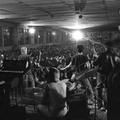 """""""Popválogatottunk utánpótlása"""" – az Új Hullám '82 fesztivál paradoxonjai"""