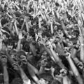 Kócos tömeg a Schmidt-villában – az 1981-es dorogi rockfesztivál