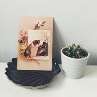 Újévi fogadalmak ~ cruelty free blogger lettem