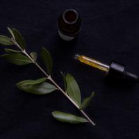 Phi Kozmetikum | Q10 Vadrózsa varázs szemkörnyékápoló