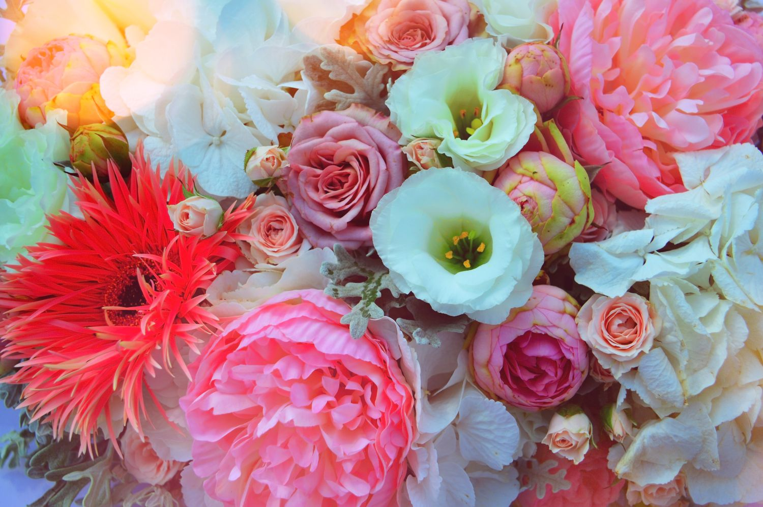 wedding-bouquet-flower-color-beautiful-pink-1447285-pxhere_com.jpg