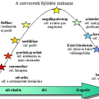 Változó szervezet - változó problémák