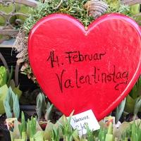 Milyen a Valentin-nap Bécsben?