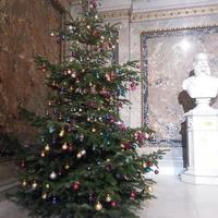 Karácsonyfamustra Bécsből
