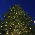 A szokottnál csendesebben indult a karácsonyi vásár Bécsben