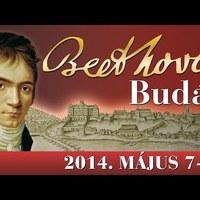 Beethoven Budán - 2014