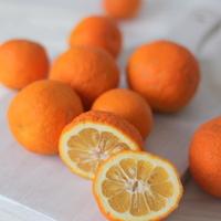 keserű narancs dzsem