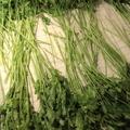 petrezselyemzöld télire