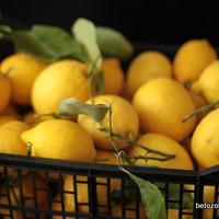 mentás bergamottolajos citromlekvár