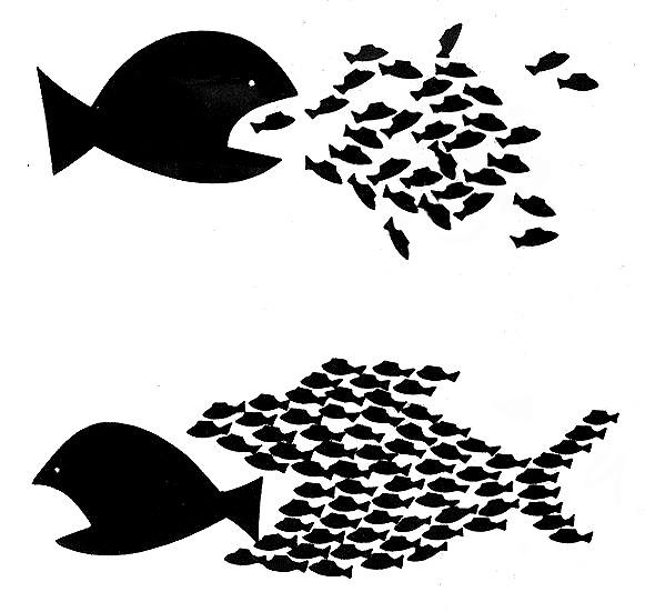 20130626-big-fish-little-fish-1_1.jpg