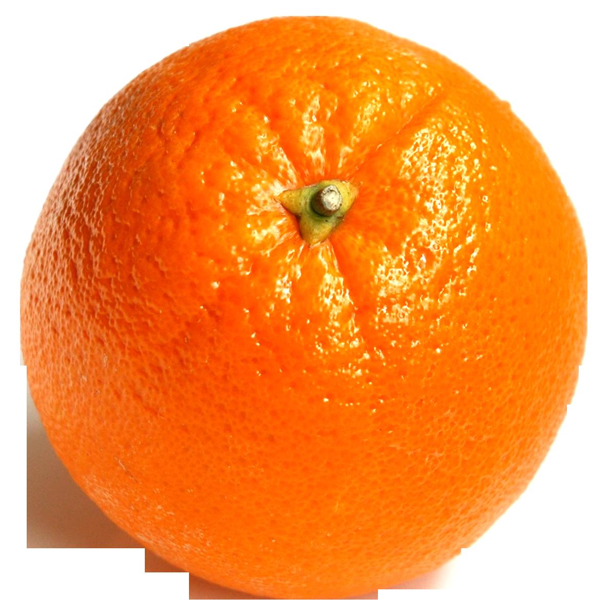 orange-fruit-png-image-2_1.png
