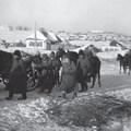 850. BEKIÁLTÁS: A rablóháború áldozatai