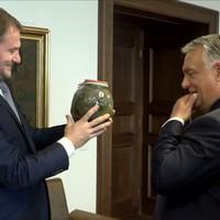 BEKIÁLTÁS: Matovičnál érik be Orbán kovászos uborkája