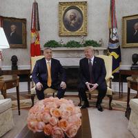 Orbán, Trump és Pápai Joci