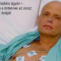 Gyilkosnak nevezte Putyint Zentai