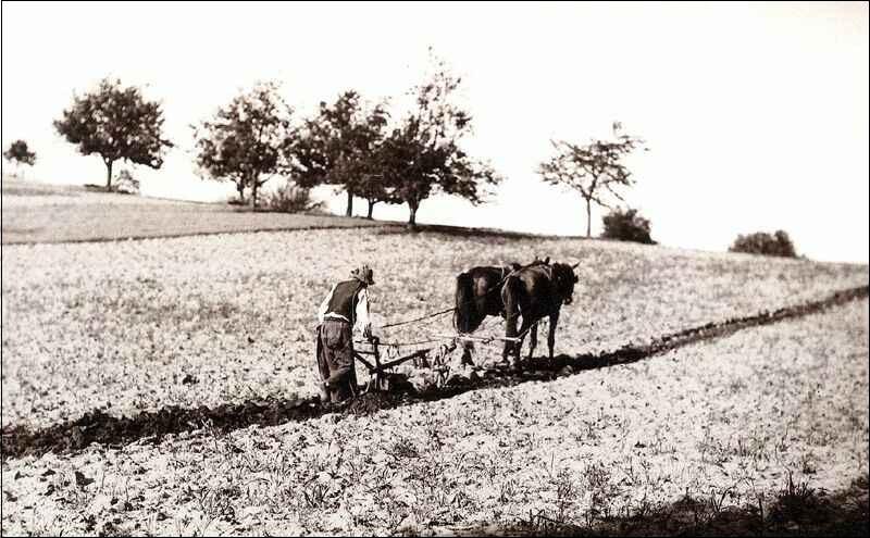 szantas1910korulforraskepido_hupalatingergely.jpg