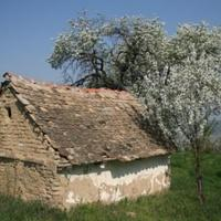 Házikó Szerbiában
