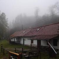 Bánkúti képek - november 7-8. (foto: bjudit)