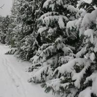 A hó a társadalomban