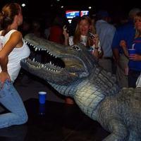 Pózolj krokodillal