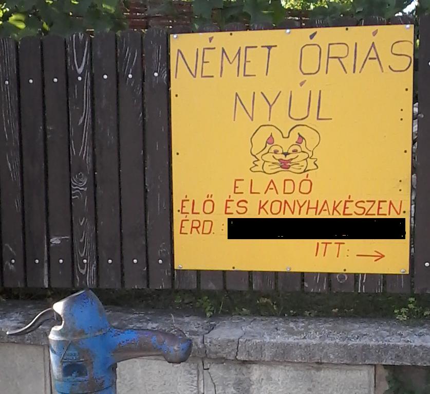 Nyul-1.png