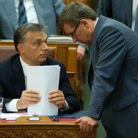Fidesz-adópolitika: rÁFÁzunk?