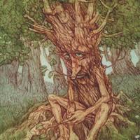 Mit tehet a III. kerület a fáiért?