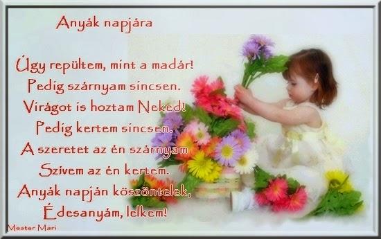 www_tvn_hu_b627b73238f8ec07bba4035173bc56cb.jpg