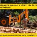 BRÉKING: bármikor indulhat a védett fák és cserjék irtása Szigetváron!