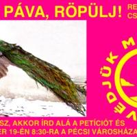 Röpülj Páva! - petíció és demonstráció az új pécsi önkormányzati választás kiírásáért