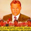 Orbán ma is gyűjti a receptet a kínai vakablakos, ruszki pottyantóssal felszerelt diktatúrához