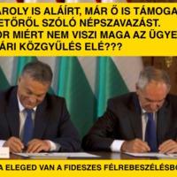 A fideszes Szita is támogatja a gumihasznosítóról szóló népszavazást