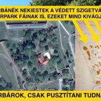 Barbár Orbánék nekiestek a védett szigetvári várpark fáinak is