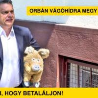 Orbán vágóhídra megy, segítünk, hogy betaláljon!