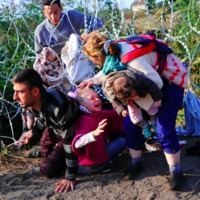 A menekültek és az újabb szervezett földlopás