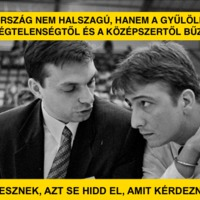 Magyarország nem halszagú, hanem gyűlölettől és a középszertől bűzlik
