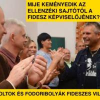 Mije keményedik az ellenzéki sajtótól a Fidesz képviselőjének?