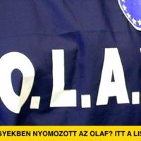 Itt a lista arról, hogy milyen hazai ügyekben nyomozott az OLAF