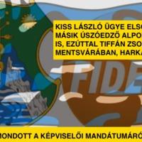 Kiss László ügye elsodort egy másik úszóedző alpolgármestert is