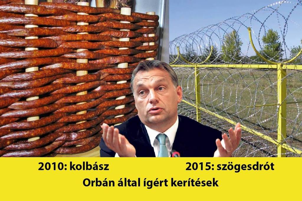 kolbasz-d00021a8ed597ae53bd60.jpeg