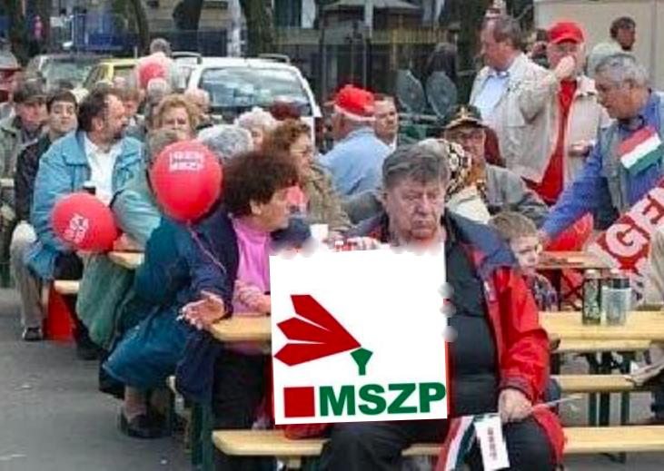 mszp.png