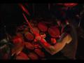 Drummer Hajnalka goes to Frank Zappa Strasse, Berlin